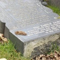 The Evil Desecration of Graves in Anfield Cemetery