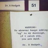 Poor Dr Hedgehog