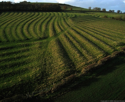 ridge-furrow
